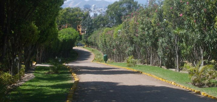 Parque Ecológico Loma Amarilla