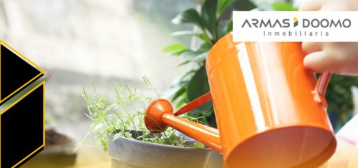 como crear ambiente saludable departamento nuevo