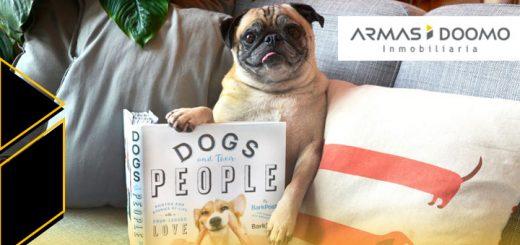 razas de perro perfectas departamento de estreno